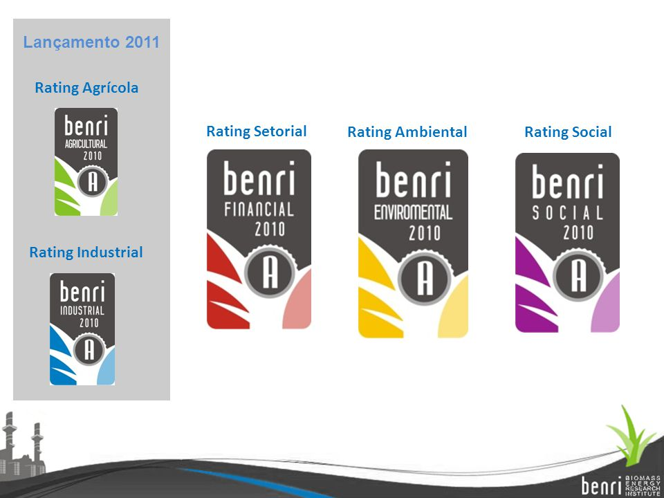 Rating Agrícola Rating Setorial Rating Ambiental Rating Industrial Rating Social Lançamento 2011