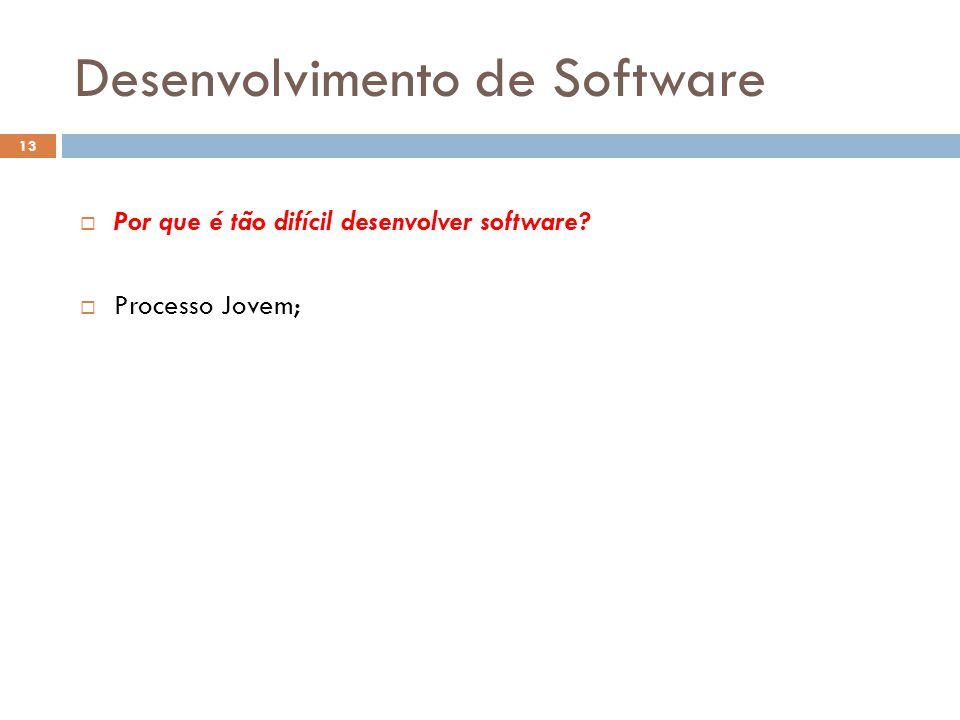  Por que é tão difícil desenvolver software?  Processo Jovem; Desenvolvimento de Software 13