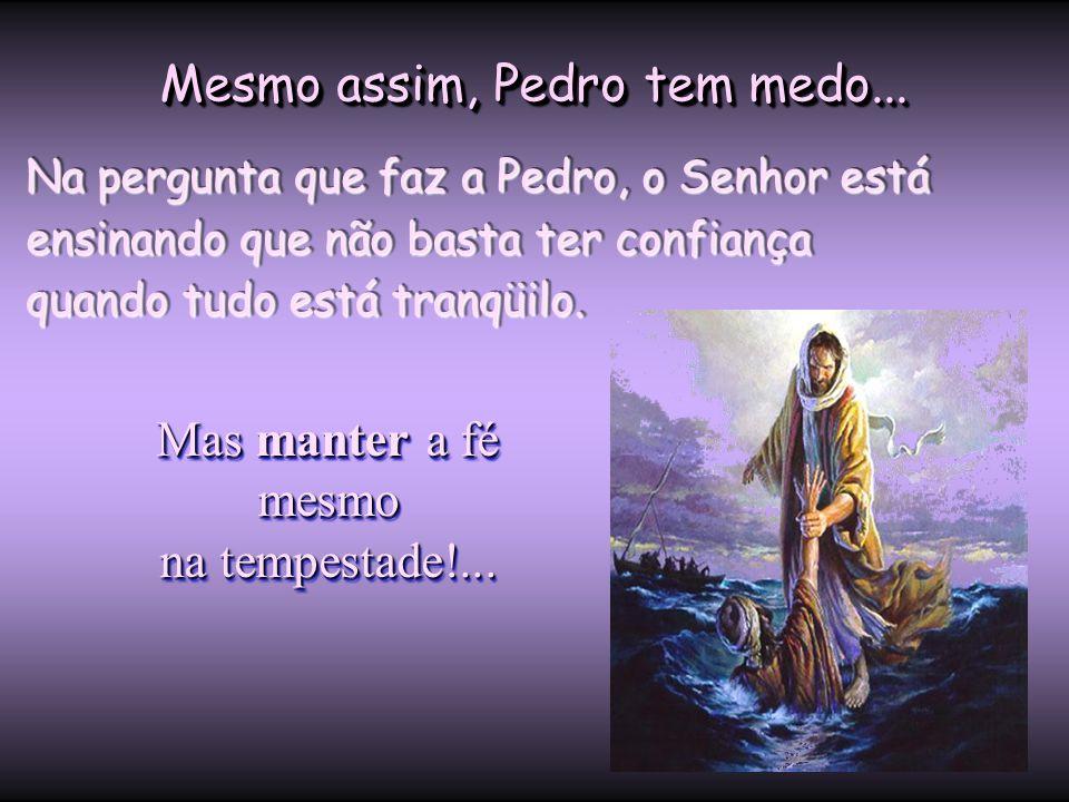 """Ao gritar: """"Senhor"""", Pedro afirma que está diante Daquele que pode sobre terra, céu e mar. Ao gritar: """"Senhor"""", Pedro afirma que está diante Daquele q"""