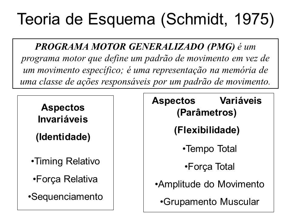 PROGRAMA MOTOR GENERALIZADO (PMG) é um programa motor que define um padrão de movimento em vez de um movimento específico; é uma representação na memória de uma classe de ações responsáveis por um padrão de movimento.