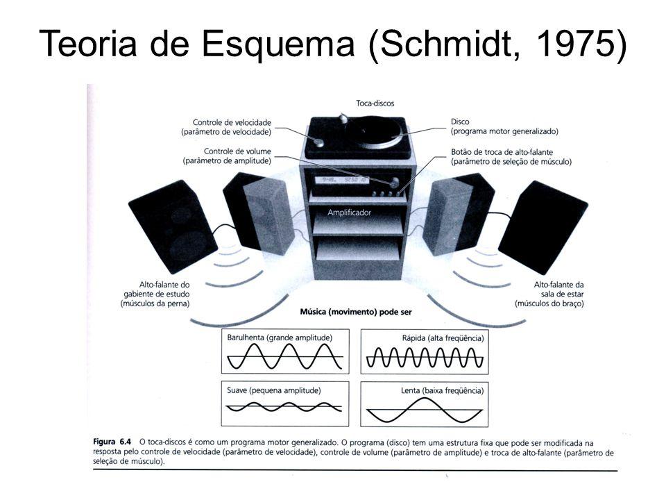 ENTRADA PROGRAMA MOTOR GENERALIZADO MEDULA ESPINHAL MÚSCULOS AMBIENTE PROGRAMAÇÃO DA RESPOSTA SELEÇÃO DA RESPOSTA IDENTIFICAÇÃO DO ESTÍMULO META (Schmidt & Wrisberg, 2001) EFETOR EXECUTIVO COMPARADOR FEEDBACK Estado real ERRO Estado desejado