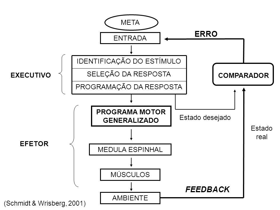 Teoria de Esquema (Schmidt, 1975) ESQUEMAS são um conjunto de regras abstratas relacionando os vários resultados das ações de um indivíduo com os valores de parâmetros que ele escolheu, a fim de produzir aqueles resultados.