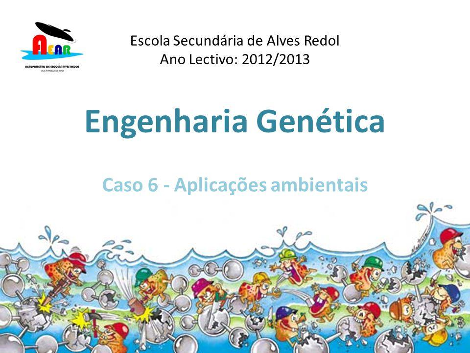 Engenharia Genética Caso 6 - Aplicações ambientais Escola Secundária de Alves Redol Ano Lectivo: 2012/2013