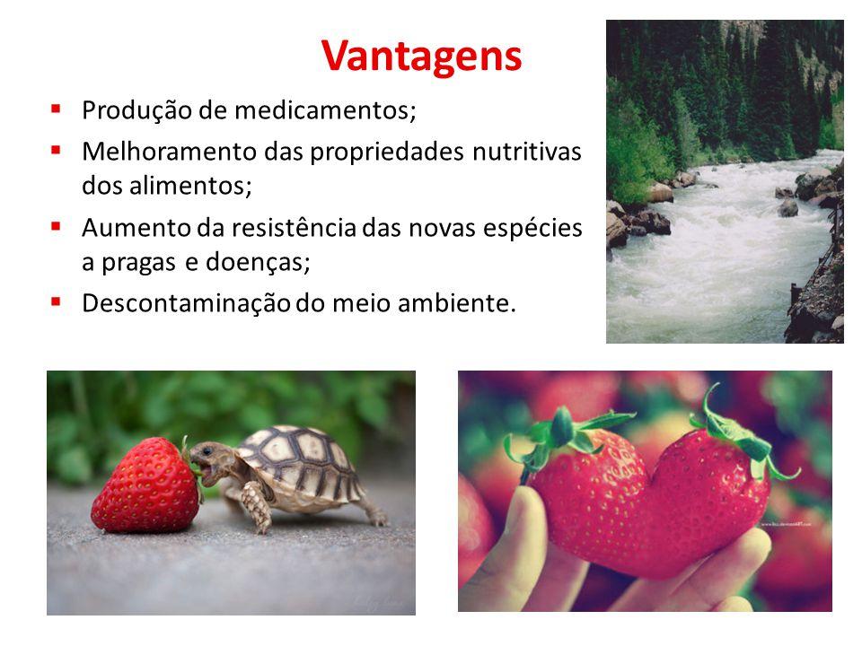 Vantagens  Produção de medicamentos;  Melhoramento das propriedades nutritivas dos alimentos;  Aumento da resistência das novas espécies a pragas e doenças;  Descontaminação do meio ambiente.