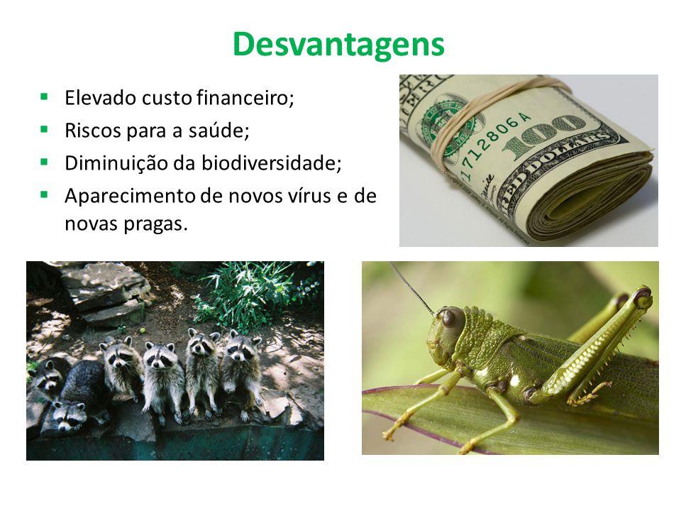 Desvantagens  Elevado custo financeiro;  Riscos para a saúde;  Diminuição da biodiversidade;  Aparecimento de novos vírus e de novas pragas.