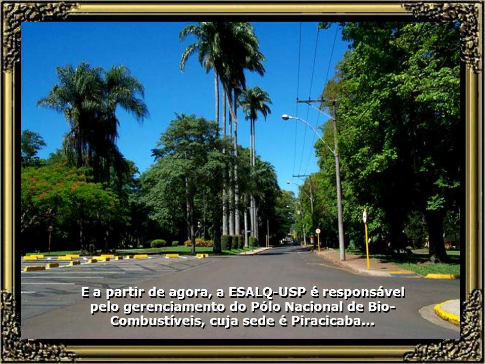 Um campus grandioso, com recursos de primeiro mundo, corpo docente de alto nível, a ESALQ-USP se constitui, hoje, numa das maiores e mais bem equipadas Universidades de Agronomia da América Latina, além de destacado centro de pesquisa científica...