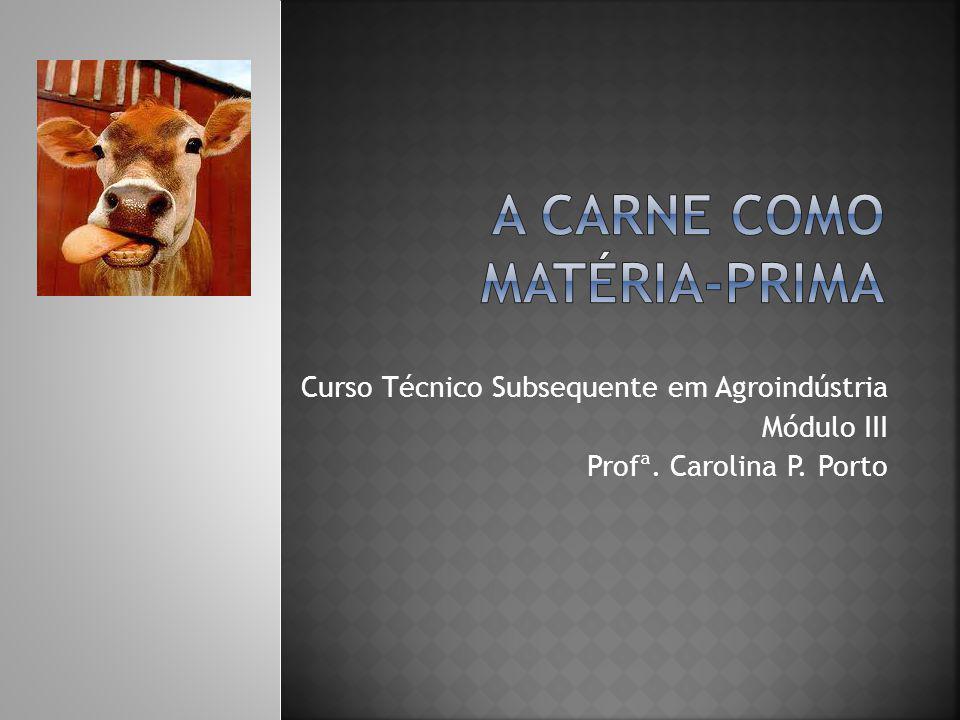 Curso Técnico Subsequente em Agroindústria Módulo III Profª. Carolina P. Porto