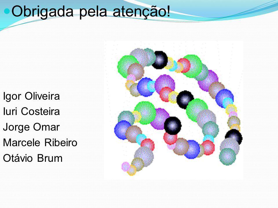 Obrigada pela atenção! Igor Oliveira Iuri Costeira Jorge Omar Marcele Ribeiro Otávio Brum