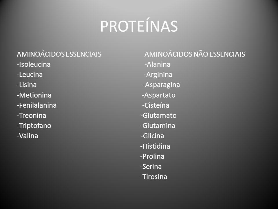 PROTEÍNAS AMINOÁCIDOS ESSENCIAIS AMINOÁCIDOS NÃO ESSENCIAIS -Isoleucina -Alanina -Leucina -Arginina -Lisina -Asparagina -Metionina -Aspartato -Fenilal