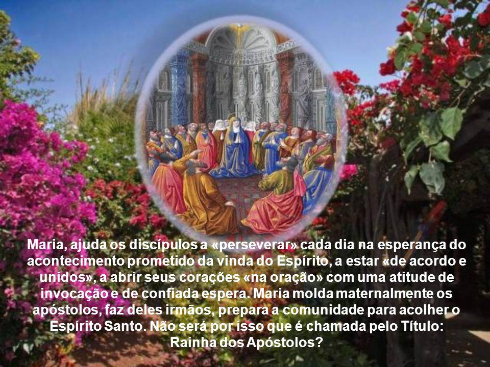 À Mãe de Cristo e aos discípulos são concedidos nova força e novo dinamismo apostólico para o crescimento da Igreja. Em particular, a efusão do Espíri