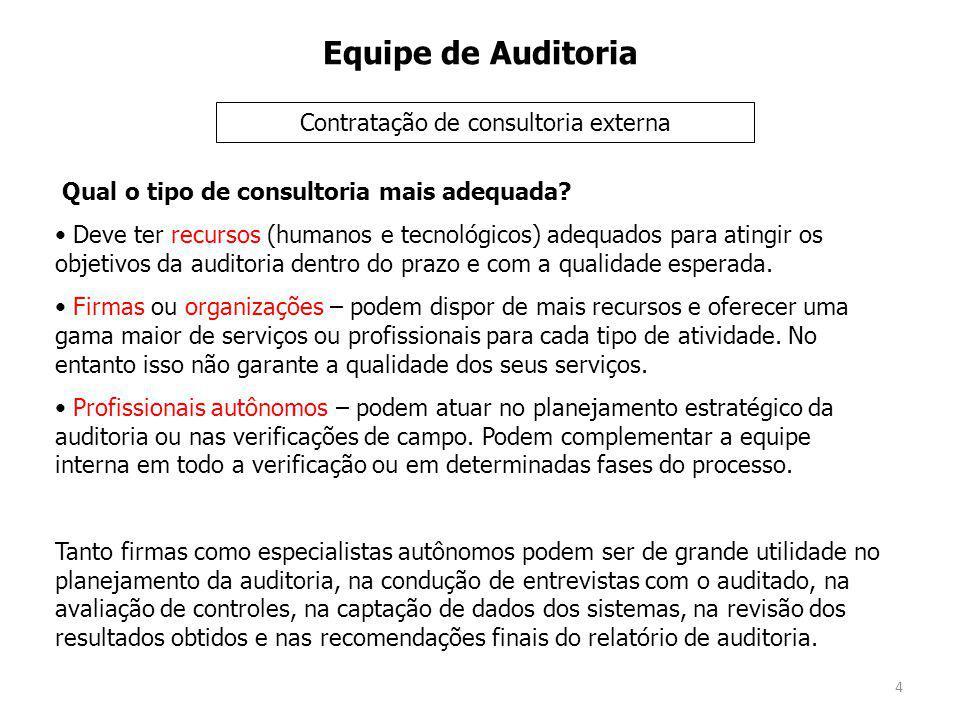 4 Equipe de Auditoria Qual o tipo de consultoria mais adequada.