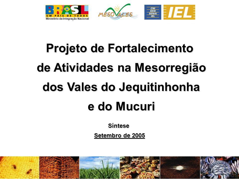 Ministério da Integração Nacional Projeto de Fortalecimento de Atividades na Mesorregião de Atividades na Mesorregião dos Vales do Jequitinhonha dos Vales do Jequitinhonha e do Mucuri e do MucuriSíntese Setembro de 2005