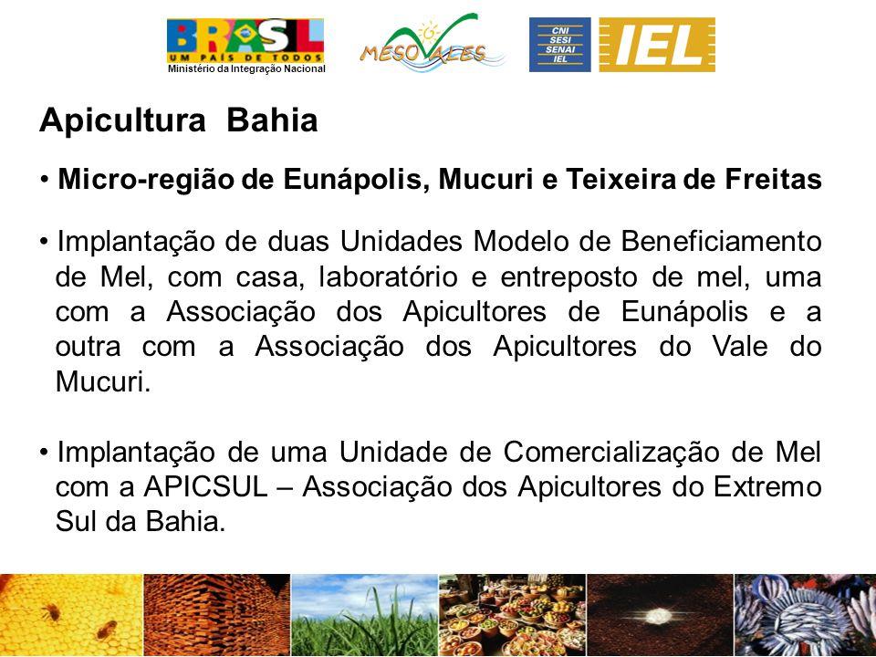 Ministério da Integração Nacional ApiculturaBahia Micro-região de Eunápolis, Mucuri e Teixeira de Freitas Implantação de duas Unidades Modelo de Benef