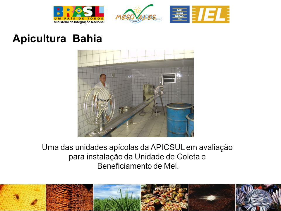 Ministério da Integração Nacional ApiculturaBahia Uma das unidades apícolas da APICSUL em avaliação para instalação da Unidade de Coleta e Beneficiamento de Mel.