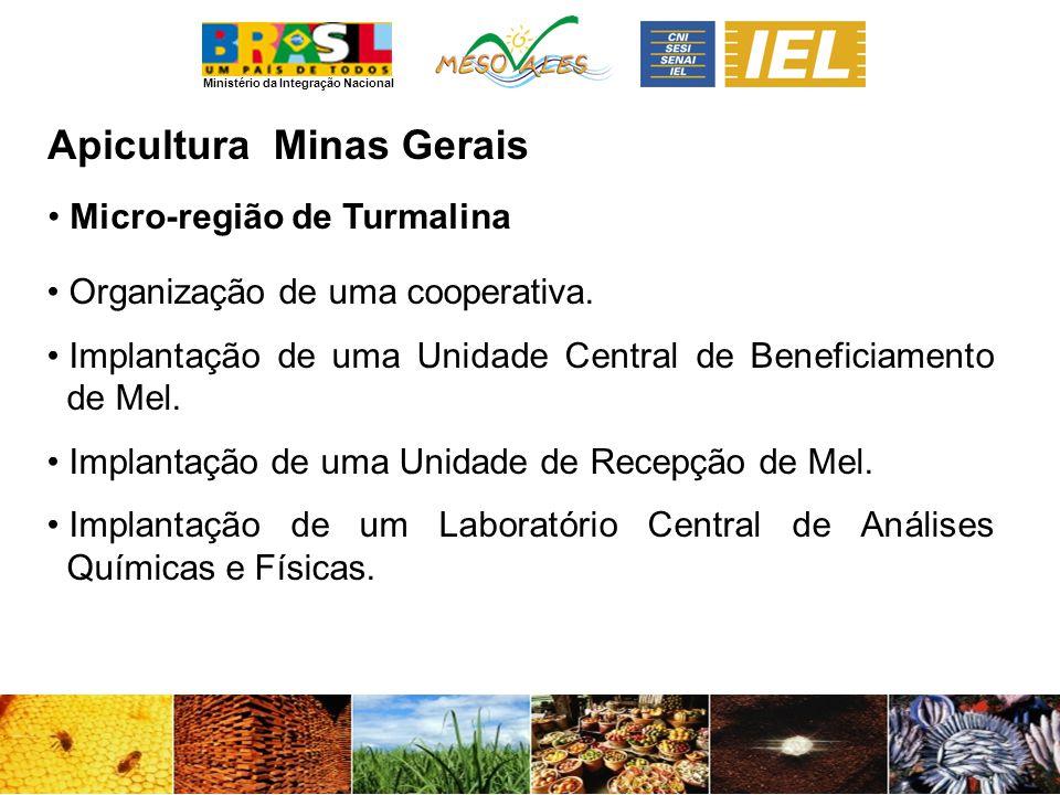 Ministério da Integração Nacional ApiculturaMinas Gerais Micro-região de Turmalina Organização de uma cooperativa. Implantação de uma Unidade Central