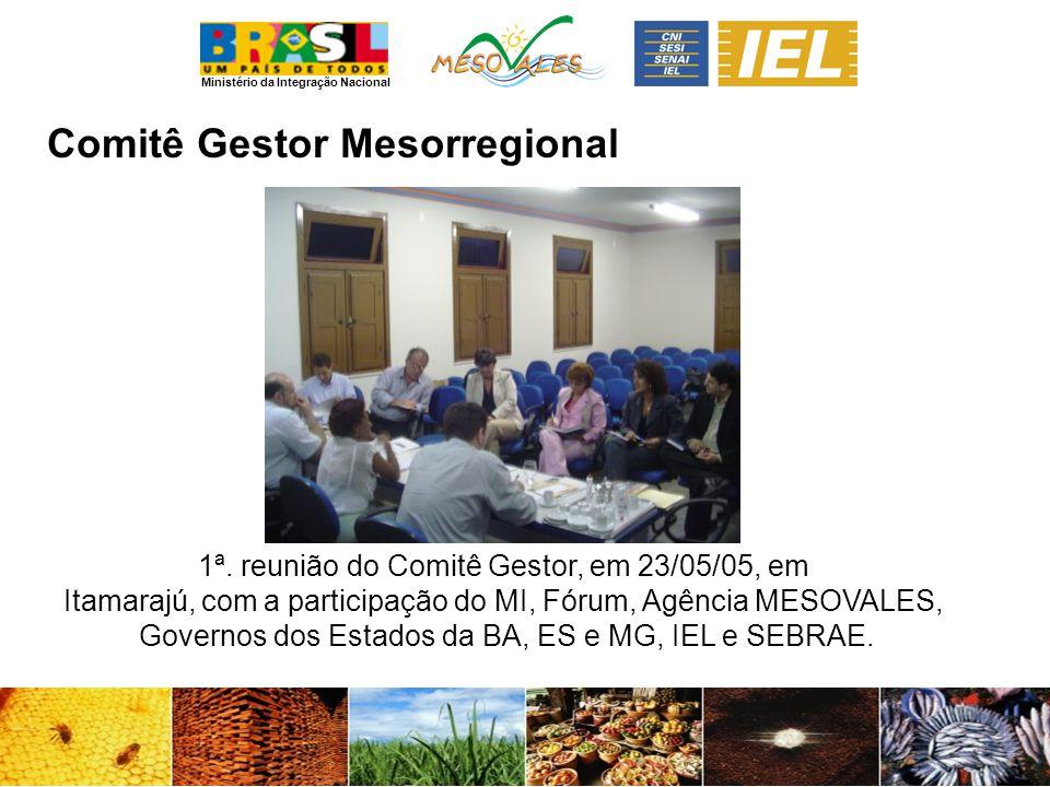 Comitê Gestor Mesorregional 1ª. reunião do Comitê Gestor, em 23/05/05, em Itamarajú, com a participação do MI, Fórum, Agência MESOVALES, Governos dos