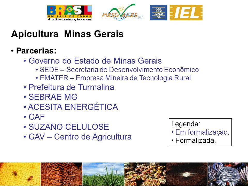 Ministério da Integração Nacional ApiculturaMinas Gerais Parcerias: Governo do Estado de Minas Gerais SEDE – Secretaria de Desenvolvimento Econômico E
