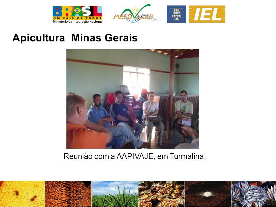 Ministério da Integração Nacional ApiculturaMinas Gerais Reunião com a AAPIVAJE, em Turmalina.