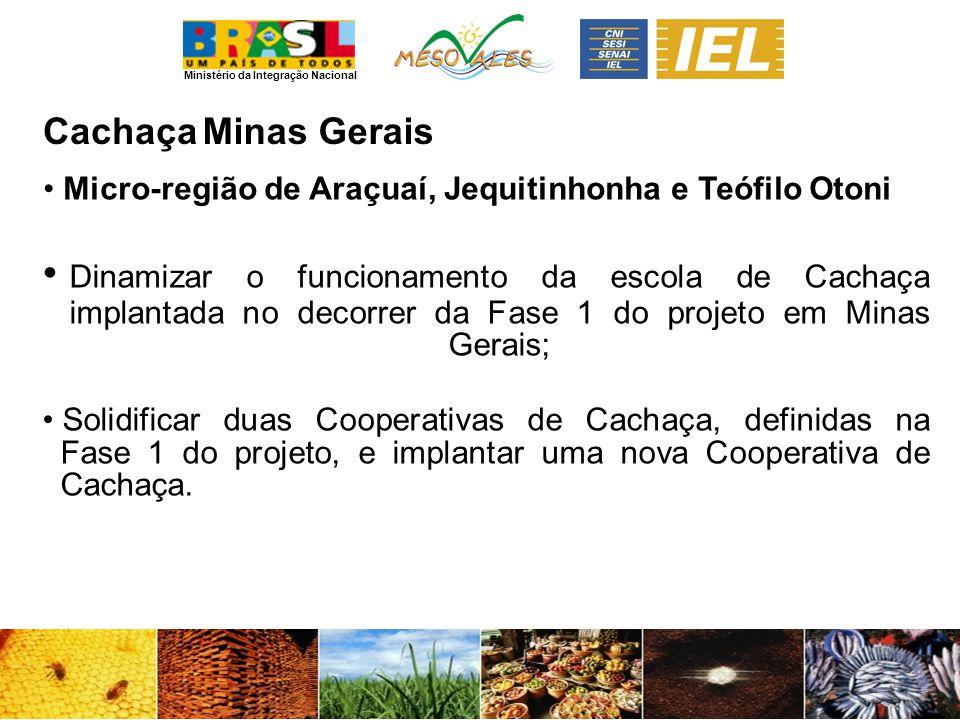 Ministério da Integração Nacional CachaçaMinas Gerais Micro-região de Araçuaí, Jequitinhonha e Teófilo Otoni Dinamizar o funcionamento da escola de Ca