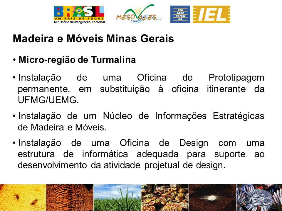 Ministério da Integração Nacional Madeira e MóveisMinas Gerais Micro-região de Turmalina Instalação de uma Oficina de Prototipagem permanente, em substituição à oficina itinerante da UFMG/UEMG.