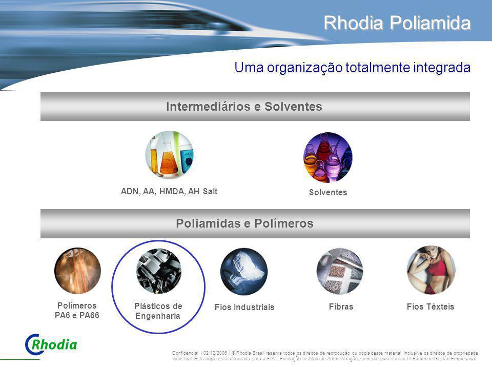 Rhodia Poliamida Poliamidas e Polímeros Plásticos de Engenharia Fios TêxteisFibras Fios Industriais Intermediários e Solventes Polímeros PA6 e PA66 AD