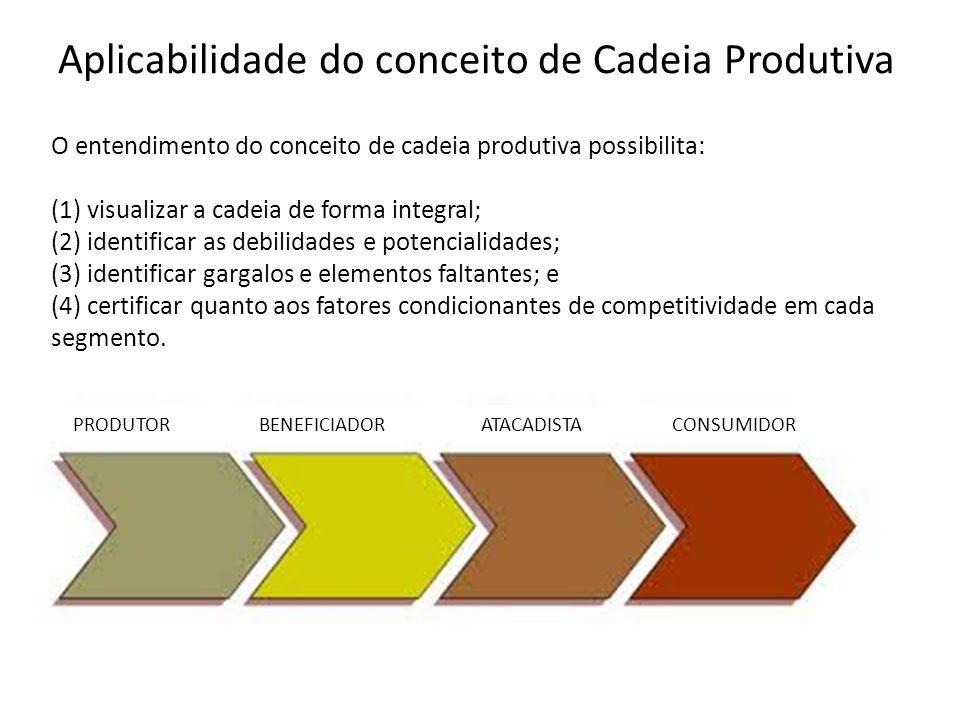 Aplicabilidade do conceito de Cadeia Produtiva O entendimento do conceito de cadeia produtiva possibilita: (1) visualizar a cadeia de forma integral;