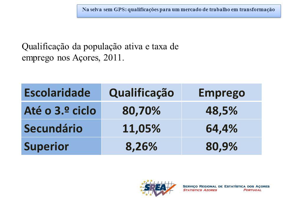EscolaridadeQualificaçãoEmprego Até o 3.º ciclo80,70%48,5% Secundário11,05%64,4% Superior8,26%80,9% Qualificação da população ativa e taxa de emprego