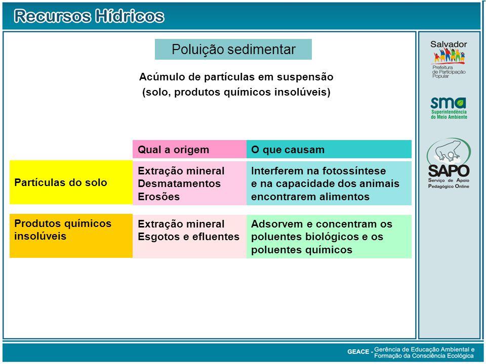 Acúmulo de partículas em suspensão (solo, produtos químicos insolúveis) Qual a origemO que causam Extração mineral Desmatamentos Erosões Interferem na
