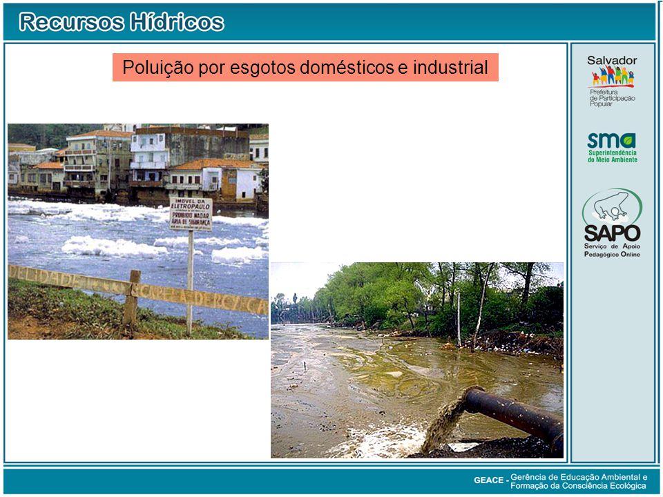Poluição por esgotos domésticos e industrial Poluição por Esgotos Domésticos e Industrial
