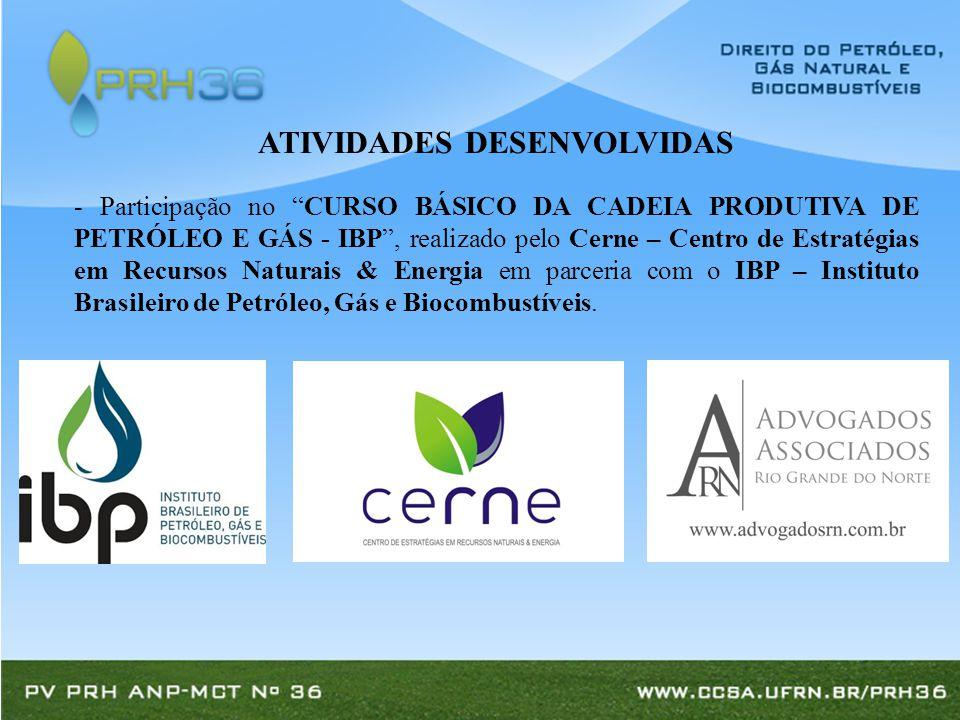 - Participação no CURSO BÁSICO DA CADEIA PRODUTIVA DE PETRÓLEO E GÁS - IBP , realizado pelo Cerne – Centro de Estratégias em Recursos Naturais & Energia em parceria com o IBP – Instituto Brasileiro de Petróleo, Gás e Biocombustíveis.