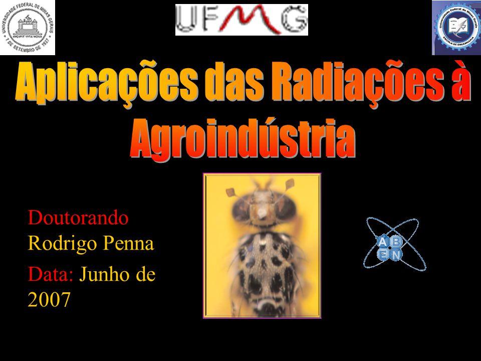 12 A PRAGA Ataque de uma mosca da fruta típica da Espanha.