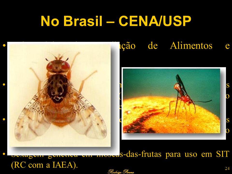 Rodrigo Penna No Brasil – CENA/USP Laboratório de Irradiação de Alimentos e Radioentomologia. Pesquisas em andamento Supressão populacional de moscas-