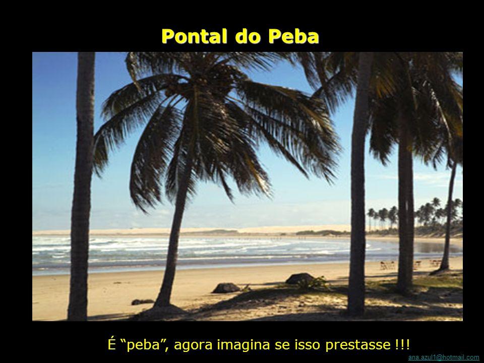 ana.azul1@hotmail.com Praia do Gunga Já viu coisa mais linda