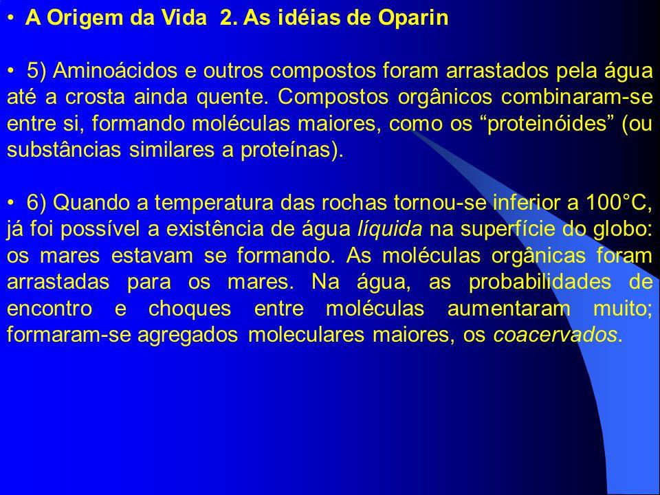 A Origem da Vida 2. As idéias de Oparin 5) Aminoácidos e outros compostos foram arrastados pela água até a crosta ainda quente. Compostos orgânicos co