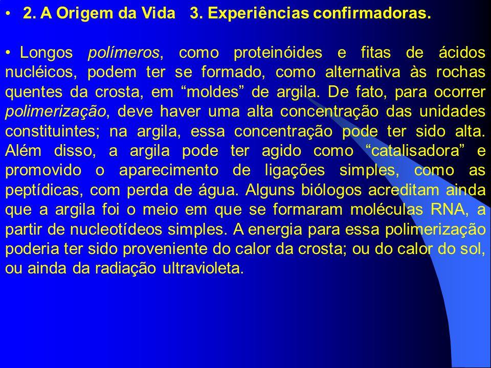 2. A Origem da Vida 3. Experiências confirmadoras. Longos polímeros, como proteinóides e fitas de ácidos nucléicos, podem ter se formado, como alterna