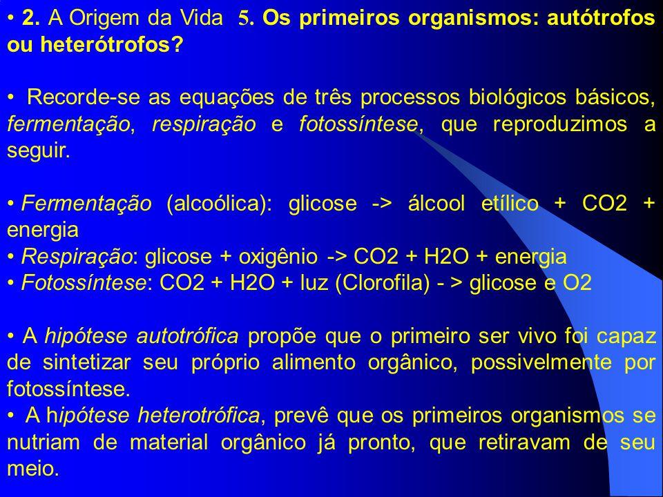 2. A Origem da Vida 5. Os primeiros organismos: autótrofos ou heterótrofos? Recorde-se as equações de três processos biológicos básicos, fermentação,