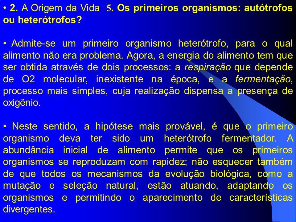 2. A Origem da Vida 5. Os primeiros organismos: autótrofos ou heterótrofos? Admite-se um primeiro organismo heterótrofo, para o qual alimento não era