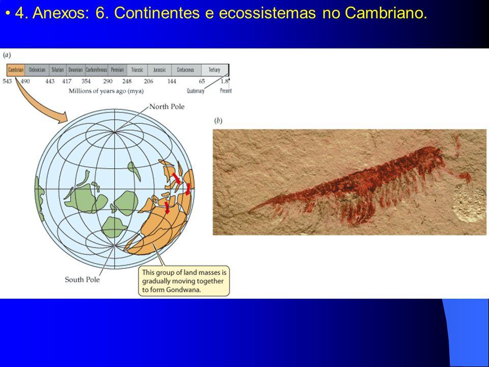 4. Anexos: 6. Continentes e ecossistemas no Cambriano.