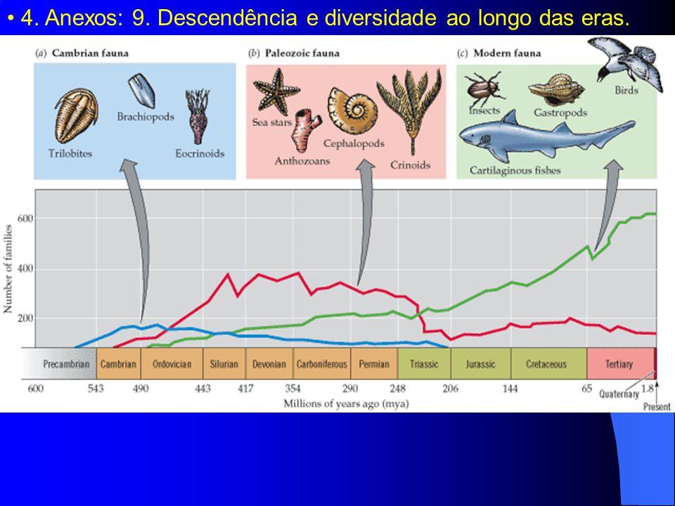 4. Anexos: 9. Descendência e diversidade ao longo das eras.