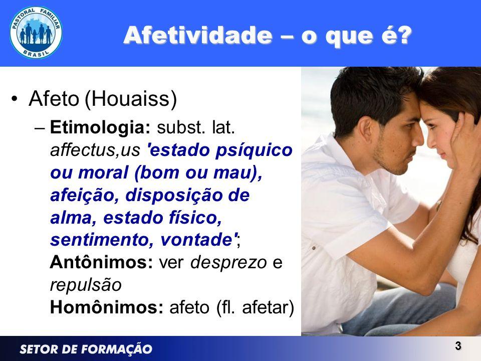 Afetividade – o que é? Afeto (Houaiss) –Etimologia: subst. lat. affectus,us 'estado psíquico ou moral (bom ou mau), afeição, disposição de alma, estad