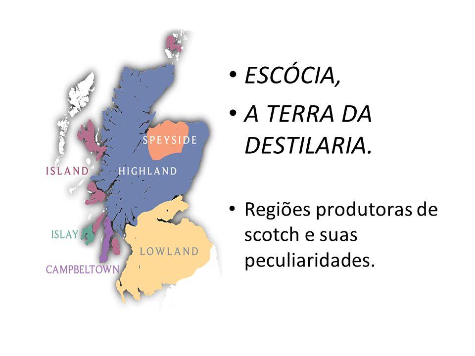 ESCÓCIA, A TERRA DA DESTILARIA. Regiões produtoras de scotch e suas peculiaridades.