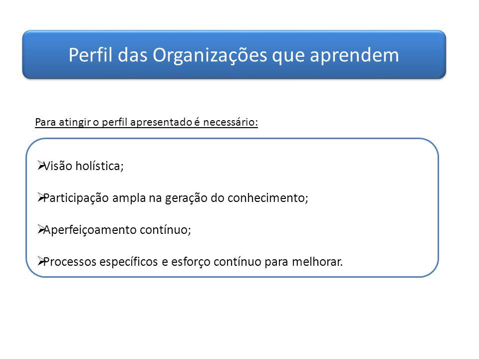 Perfil das Organizações que aprendem  Visão holística;  Participação ampla na geração do conhecimento;  Aperfeiçoamento contínuo;  Processos espec