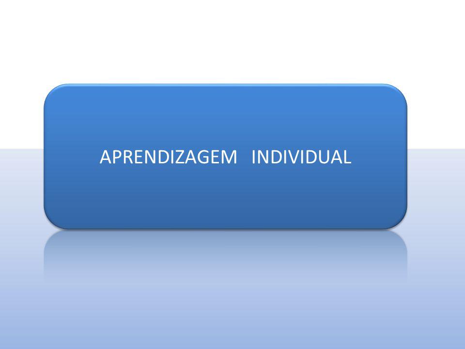 Aperfeiçoamento do Conhecimento  Aprender a melhorar o conhecimento organizacional existente;  Aprender a criar um novo conhecimento organizacional;  Saber disseminar ou transferir o conhecimento para as áreas da organização.