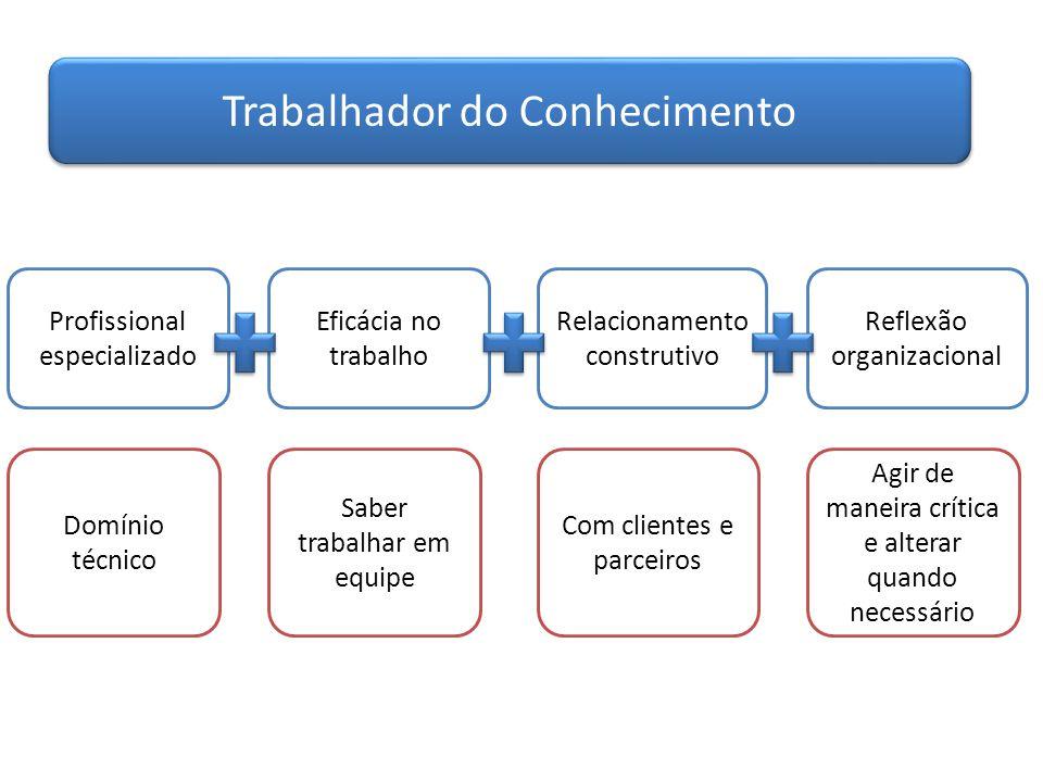 Trabalhador do Conhecimento Profissional especializado Eficácia no trabalho Relacionamento construtivo Reflexão organizacional Domínio técnico Saber t