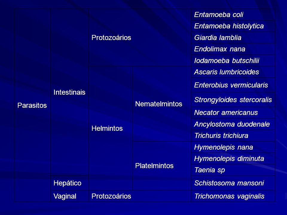 Parasitos Intestinais Protozoários Entamoeba coli Entamoeba histolytica Giardia lamblia Endolimax nana Iodamoeba butschilii Helmintos Nematelmintos Ascaris lumbricoides Enterobius vermicularis Strongyloides stercoralis Necator americanus Ancylostoma duodenale Trichuris trichiura Platelmintos Hymenolepis nana Hymenolepis diminuta Taenia sp HepáticoSchistosoma mansoni VaginalProtozoáriosTrichomonas vaginalis