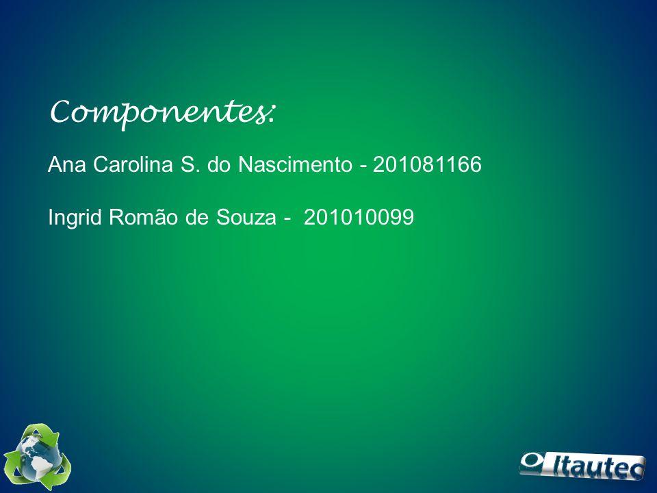 Componentes: Ana Carolina S. do Nascimento - 201081166 Ingrid Romão de Souza - 201010099
