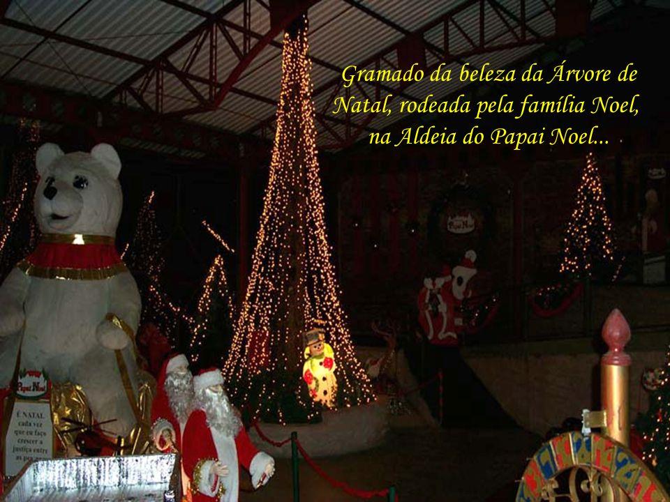 Aqui o Papai Noel, em sua Aldeia, brindando os visitantes com suas boas vindas e festejando o Natal que se aproxima...