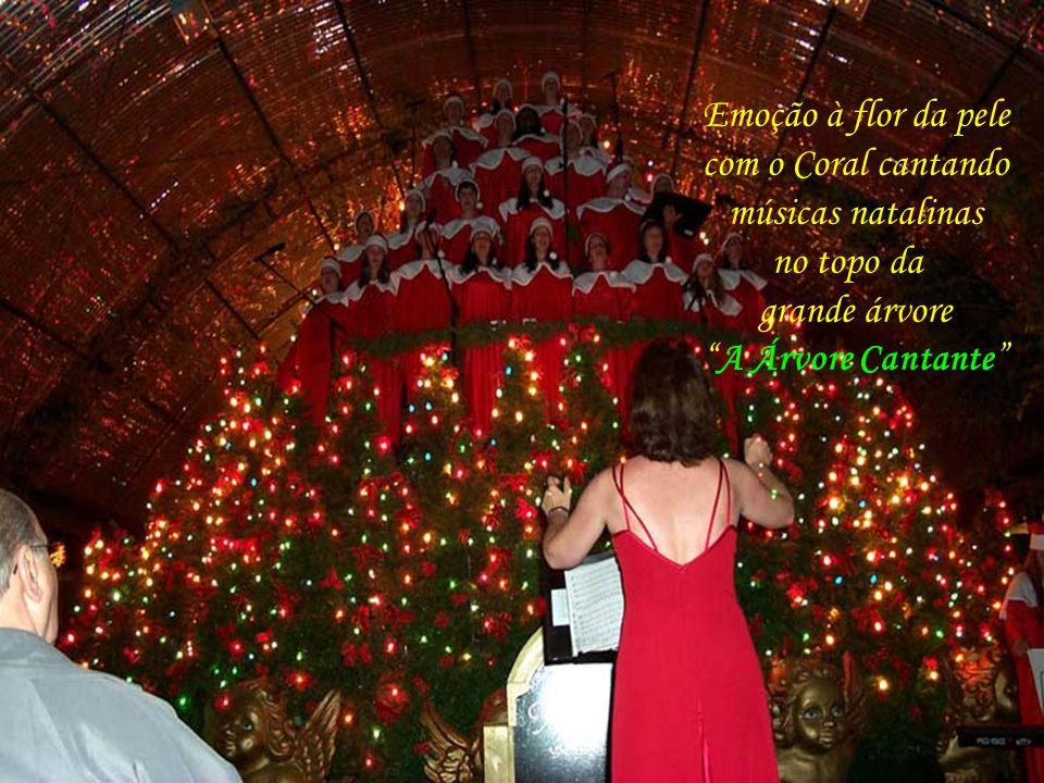 Da beleza da apresentação da Árvore Cantante, na Rua Coberta, centro de Gramado...