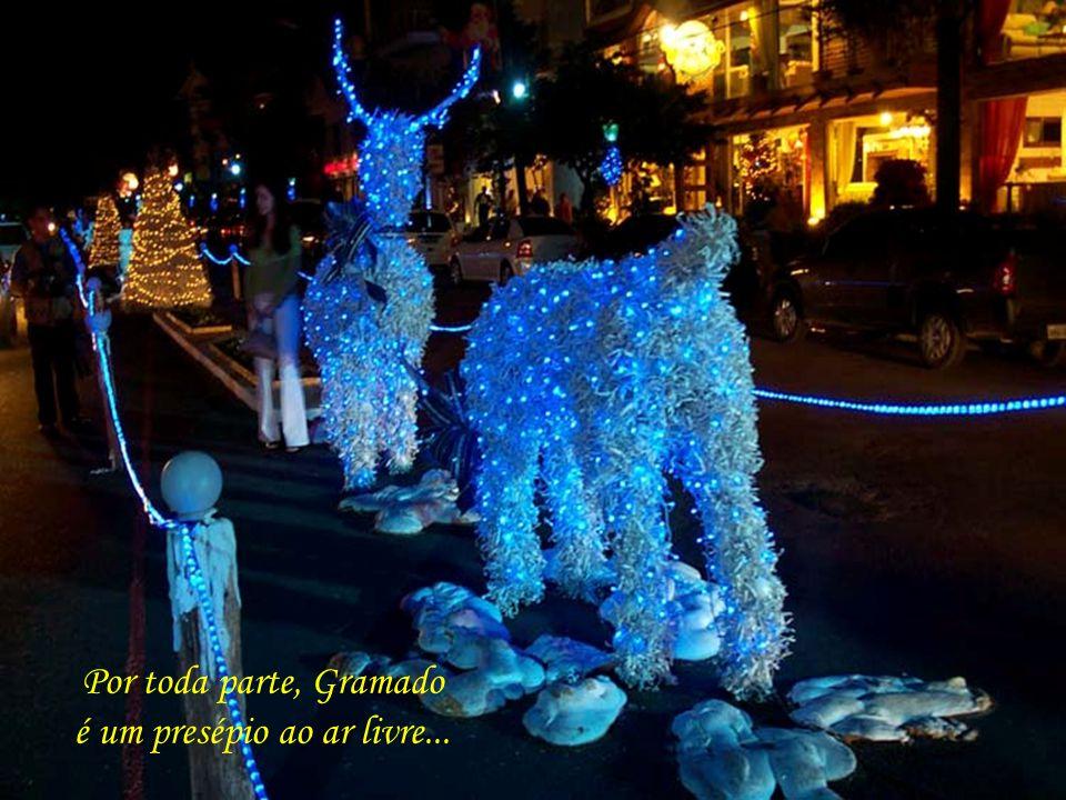 Gramado das avenidas ricamente decoradas, com luzes de efeitos multicoloridos, de encher os olhos e tocar a emoção...