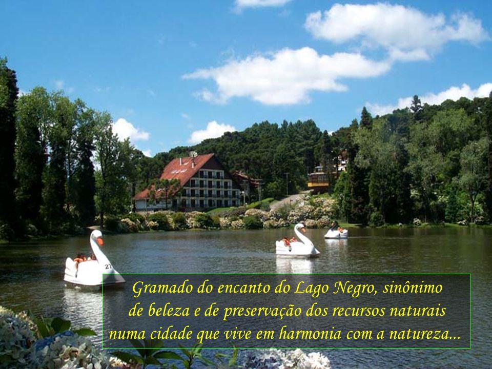 Gramado do encanto do Lago Negro, sinônimo de beleza e de preservação dos recursos naturais numa cidade que vive em harmonia com a natureza...